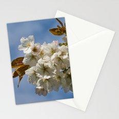 White Cherry Blossom Stationery Cards