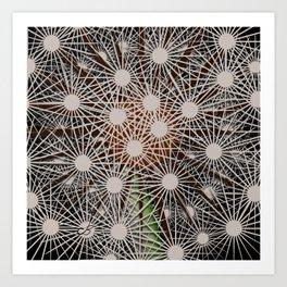 Abstract Dandilion Seeds Art Print