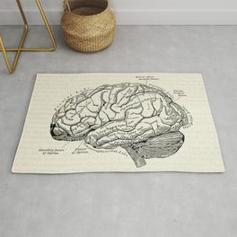 Vintage medical illustration of the human brain Rug
