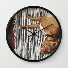 big beefy sleepy pitbull Wall Clock