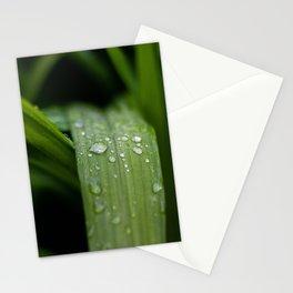 Rain Drop Stationery Cards