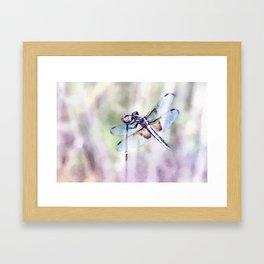 Dragonfly in Pastels Framed Art Print