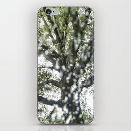 National Arboretum iPhone Skin