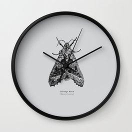 Cabbage Moth [Mamestra brassicae] Wall Clock