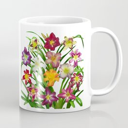 Display of daylilies II Coffee Mug