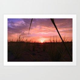 A look through the grass Art Print