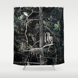 Family of Herons.... Shower Curtain