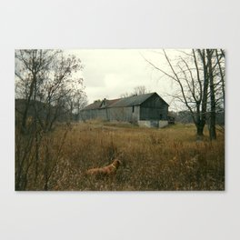 Autumn at The Farm Canvas Print
