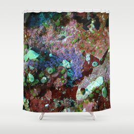 Long convoluted purple nudibranch Shower Curtain
