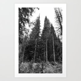 Stand Tall Friends in Black and White Art Print