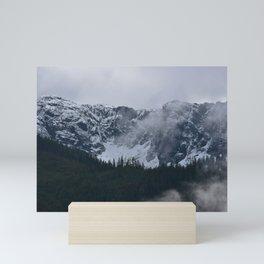 Gray morning in Squamish Mini Art Print