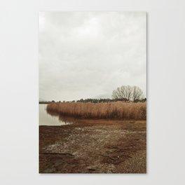 Mt Beauty Canvas Print