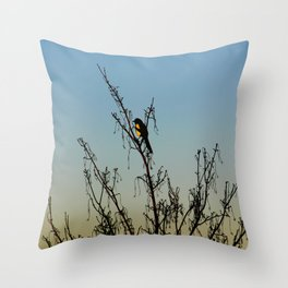 Evening song bird at sunset Throw Pillow