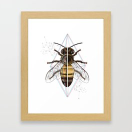 BeeSteam Framed Art Print
