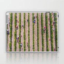 Grape Vine Laptop & iPad Skin