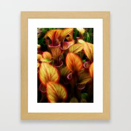Pitcher Framed Art Print