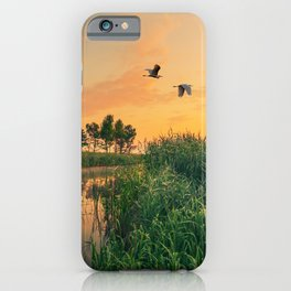 Summer dawn on a small river iPhone Case