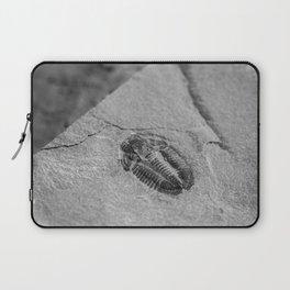 Utah - Trilobite Fossil Slab Laptop Sleeve