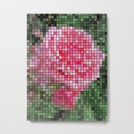 Pink Roses in Anzures 2 Mosaic Metal Print