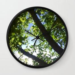 Light Up Photography Wall Clock