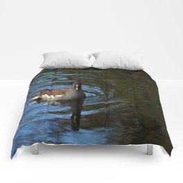Common Moorhen Comforters