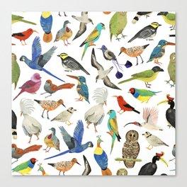 Endangered Birds Around the World Canvas Print