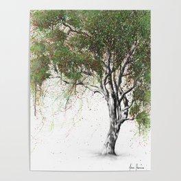 Gum Tree Poster