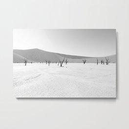 DESERT TREES IN NAMIBIA Metal Print