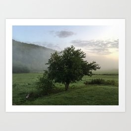 Good Misty Morning Art Print