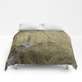 The amber waves Comforters