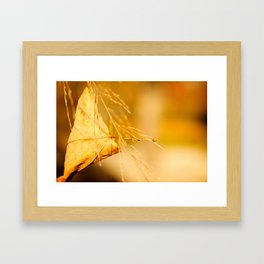 """Hanging On"" Framed Art Print"