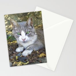 Grey cat with green eyes Stationery Cards
