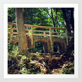 Stone Arched Bridge Amidst The Forest Art Print