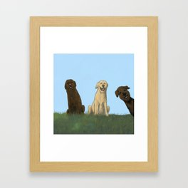 Augie Photo Bomb Framed Art Print