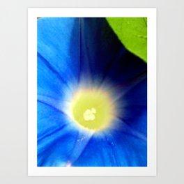 A Blue Flower  Art Print