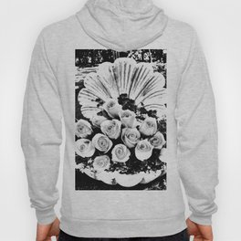 Roses in a seashell in black and white Hoody