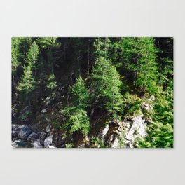 On a rocky hill  Canvas Print