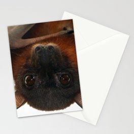 Little Red Flying Fox Hanging Out Stationery Cards