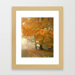 Morning Mail Framed Art Print