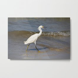 In Hot Pursuit Metal Print