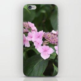 Pink flower in Butchart's Garden iPhone Skin