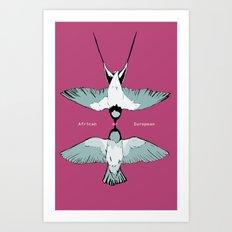 African or European swallows? Art Print