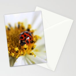 Lady Bug and her Cosmo Stationery Cards