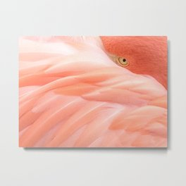 Go go, flamingo Metal Print