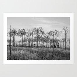 mindscapes Art Print