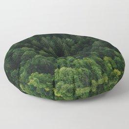 Swiss forest Floor Pillow