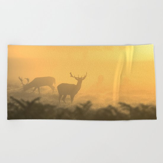 In the Clear Beach Towel