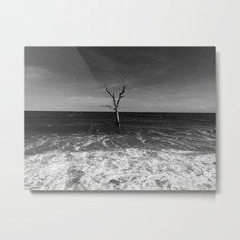 Botany Bay Metal Print