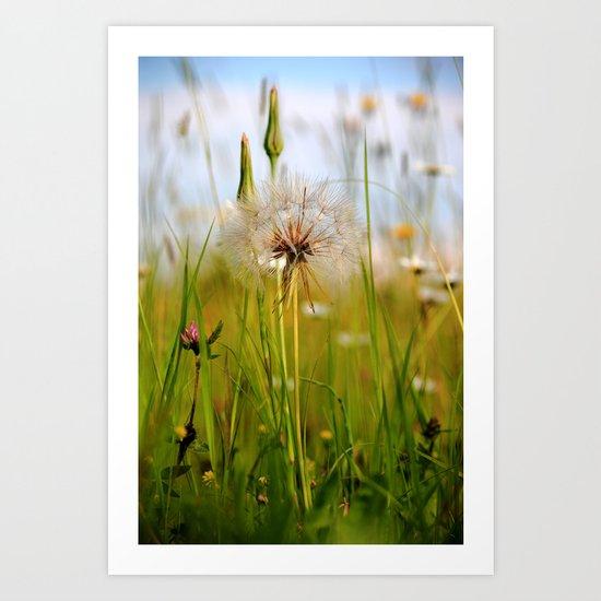 Summer Meadow Breeze Art Print