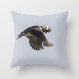 Atlantic puffin in flight with her sand eels Throw Pillow